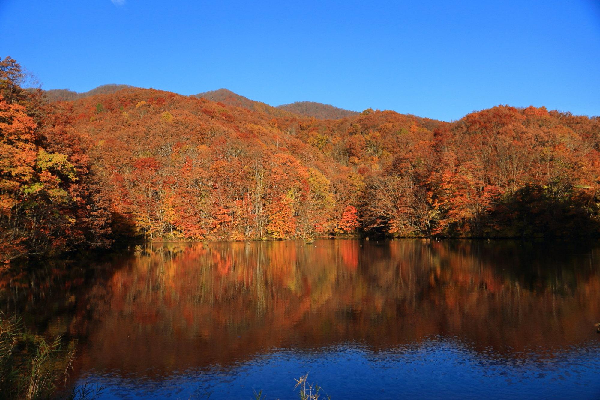 裏磐梯の景色(秋)